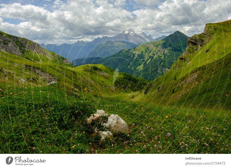 Dolomiten Höhenwiese Ferien & Urlaub & Reisen Ferne Sommer Berge u. Gebirge wandern Umwelt Natur Landschaft Wolken Schönes Wetter Gras Wiese Alpen Gipfel