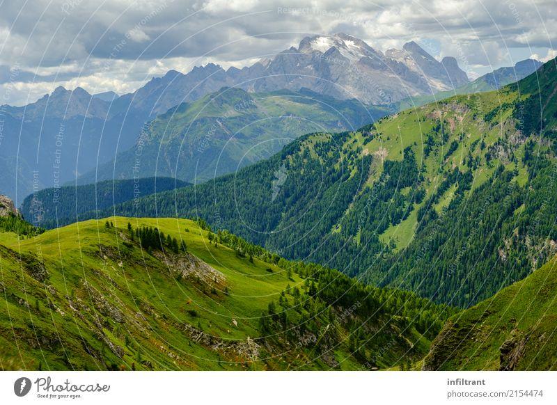 In den Dolomiten Ferien & Urlaub & Reisen Ausflug Abenteuer Ferne Freiheit Berge u. Gebirge wandern Umwelt Landschaft Wolken Schönes Wetter Gras Wiese Wald