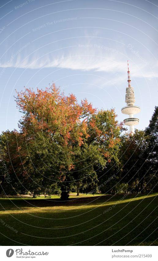 Mein Hamburg im Herbst Fernsehturm hoch Herbstlaub Baum Ahorn rot orange gelb gelb-orange rotgelb Blatt Zweige u. Äste Turm Schanzenpark Herbstfärbung