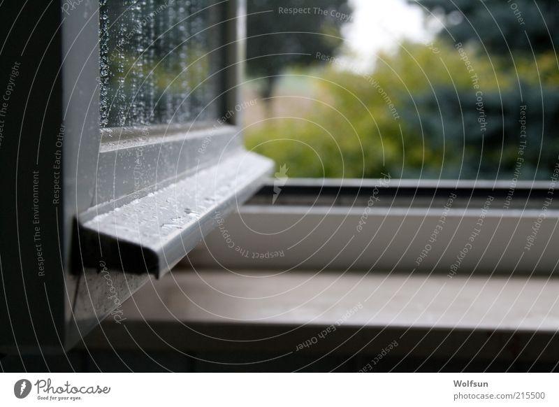 Offenes Fenster Fensterbrett Fensterblick Fensterrahmen Glas dunkel eckig kalt nass ruhig Farbfoto Nahaufnahme Menschenleer Tag Licht Schatten