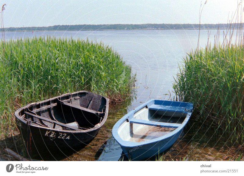 Boote Wasser Meer See Schilfrohr Vorpommersche Boddenlandschaft