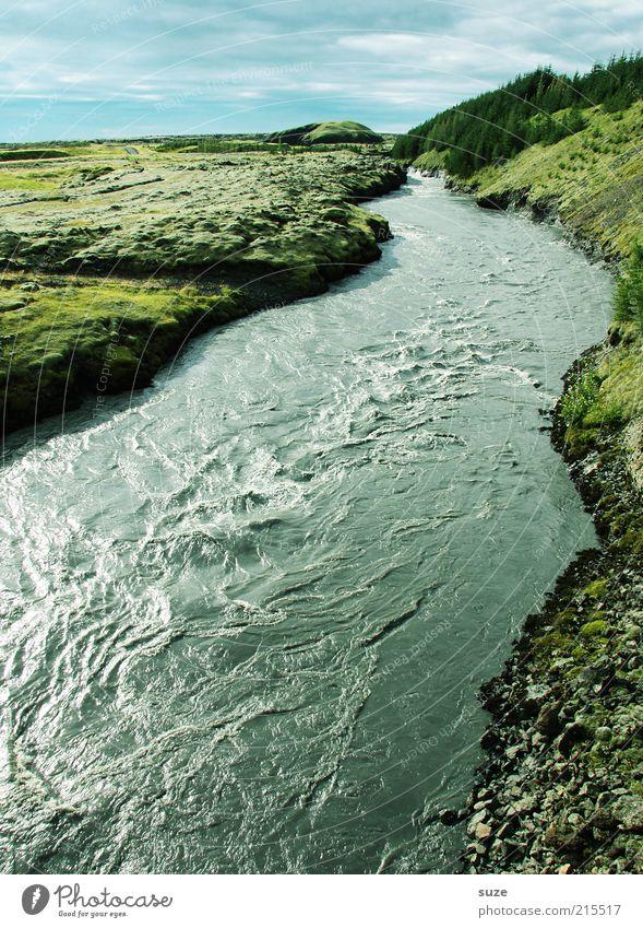 Fluss Umwelt Natur Landschaft Urelemente Wasser Himmel Wolken Horizont Schönes Wetter Wiese Flussufer außergewöhnlich fantastisch gigantisch groß kalt wild grün