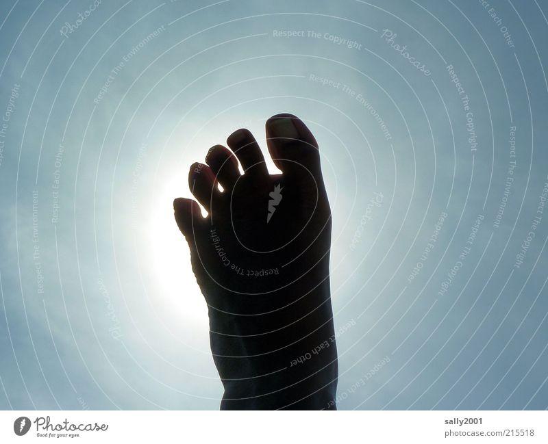 step to heaven Mensch Himmel Sonne blau Sommer Erholung oben Glück Fuß hoch einfach liegen heiß Lebensfreude Unendlichkeit außergewöhnlich