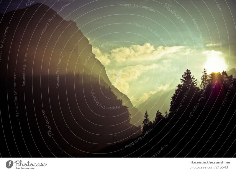 Am Ende einer langen Bergtour... Himmel Baum Sonne Sommer Ferien & Urlaub & Reisen ruhig Ferne Wald Erholung Herbst Berge u. Gebirge Freiheit Landschaft Zufriedenheit Umwelt