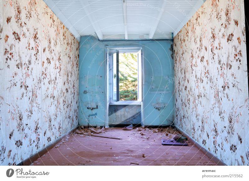 Zimmer frei alt weiß blau rot Haus Fenster Gebäude Raum Architektur Wohnung Tapete verfallen Verfall Bauwerk schäbig