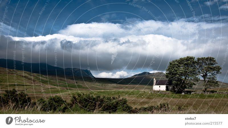 for sale Himmel weiß Baum grün blau Sommer Haus Wolken Einsamkeit Berge u. Gebirge Landschaft bedrohlich Schutz Hütte Weide Gebäude