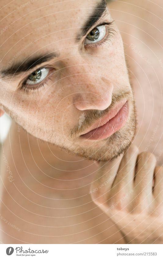 desnuda Mann Jugendliche schön Gesicht Erwachsene Haare & Frisuren Gesundheit Haut maskulin 18-30 Jahre Beautyfotografie Junger Mann Bart Anschnitt Augenbraue