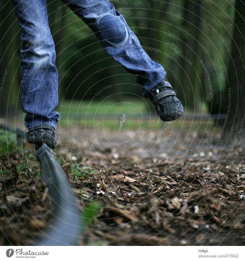 Herbstspaziergang Freude Freizeit & Hobby Spielen Blatt Spaziergang Jeanshose Kind Beine Fuß Natur Erde Park blau braun Fröhlichkeit Lebensfreude