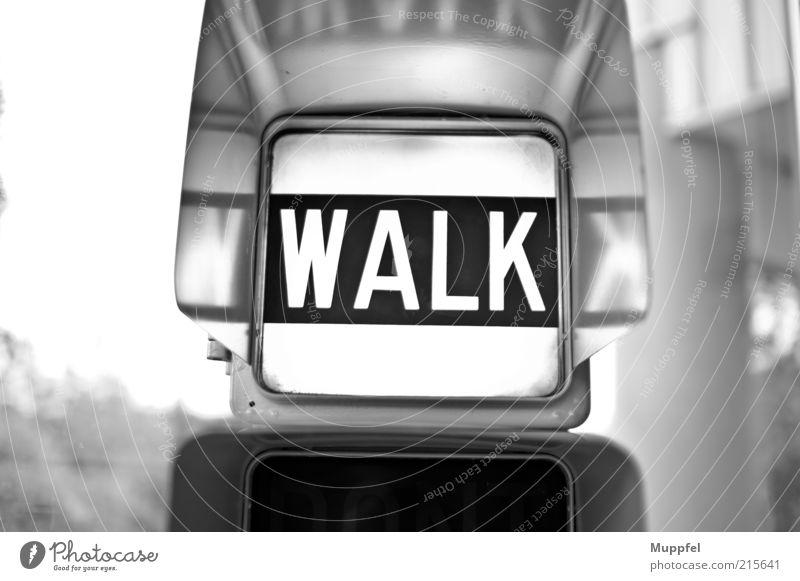 Walk Verkehrsmittel Ampel Metall ästhetisch hell kalt positiv Schwarzweißfoto Innenaufnahme Nahaufnahme Menschenleer Tag Licht Kontrast Silhouette
