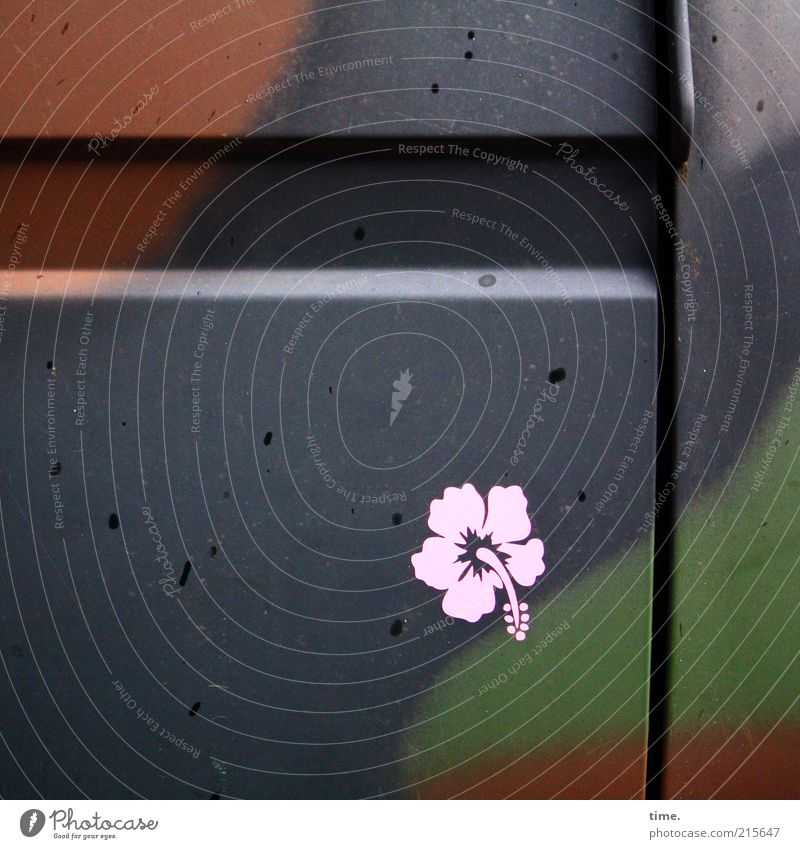[HH10.1] - Fetisch grün Blume schwarz PKW Metall braun rosa Autotür Metallwaren Bus Etikett Witz Blech Detailaufnahme Militär Schlitz