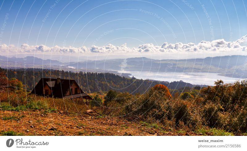 Schönes orange und rotes Herbstwaldpanorama Himmel Natur Ferien & Urlaub & Reisen blau Sommer Farbe Baum Landschaft Haus Ferne Wald Berge u. Gebirge Gras