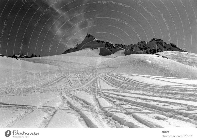 Silvretta Gegenlicht Cirrus Berge u. Gebirge Schnee Spuren Schwarzweißfoto