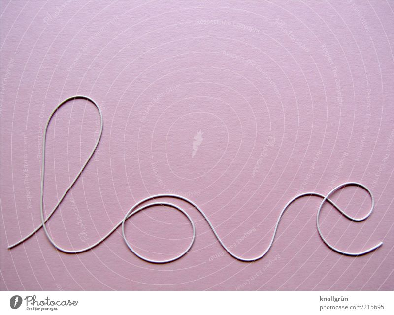 Rosarote Liebe weiß schön Freude Gefühle Glück rosa Schriftzeichen Romantik rund Kurve Partnerschaft Verliebtheit Studioaufnahme