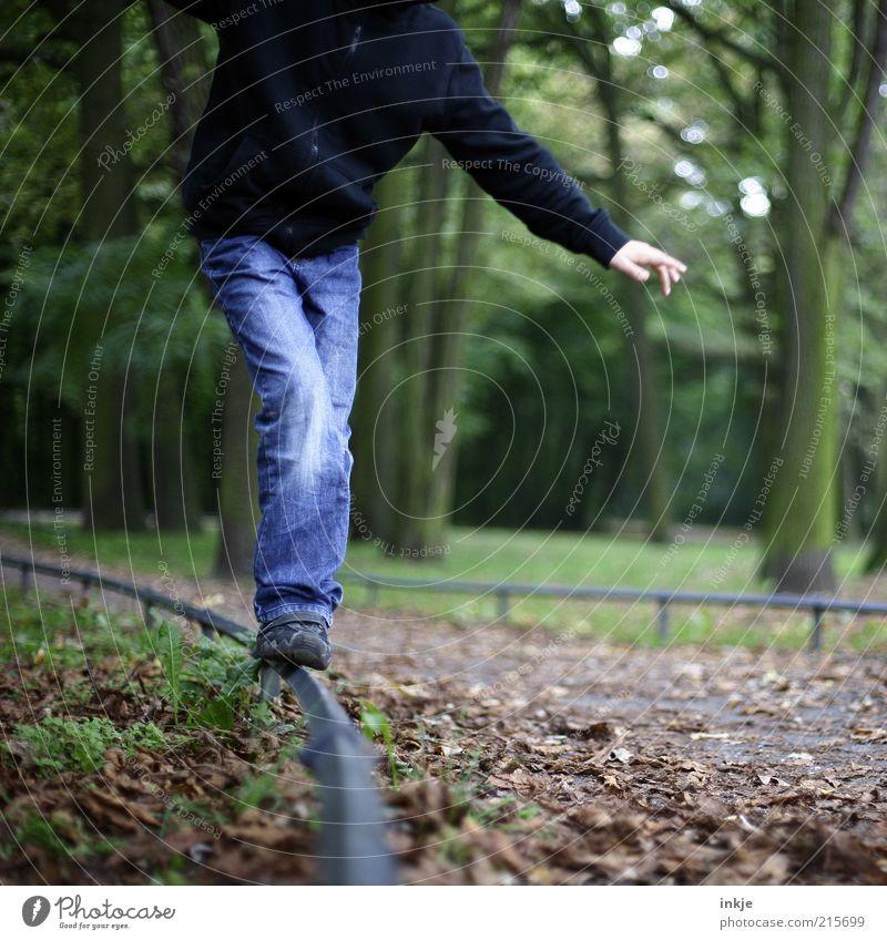 Herbstspaziergang II Kind Natur Jugendliche blau Ferien & Urlaub & Reisen grün Baum Freude Blatt schwarz Erholung Leben Wege & Pfade Beine Park braun