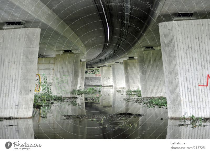 Highway - Froschperspektive Natur Wasser grün Pflanze grau Wetter trist Sträucher Autobahn unten Unwetter Urelemente Bach Pfütze Umwelt Autobrücke