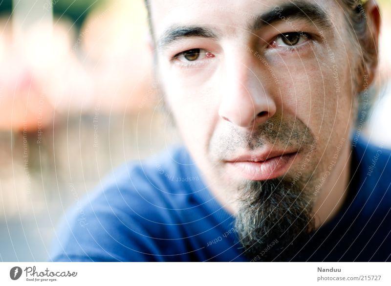 intense Mensch maskulin Gesicht 1 30-45 Jahre Erwachsene schwarzhaarig Bart Kinnbart Gefühle Stimmung authentisch Zufriedenheit nachdenklich Optimismus hell nah