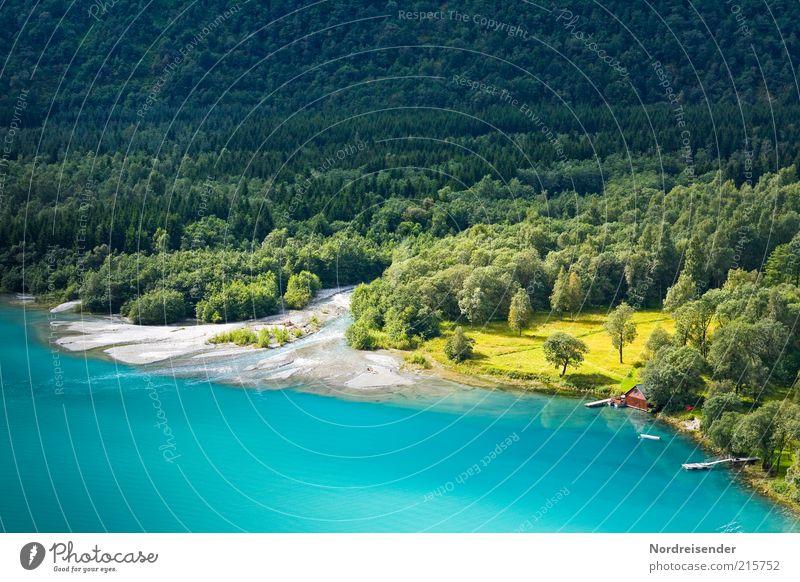 Lebensräume Ferne Freiheit Umwelt Natur Landschaft Wasser Wald Seeufer ästhetisch außergewöhnlich exotisch Romantik einzigartig Erholung Farbe Stimmung türkis