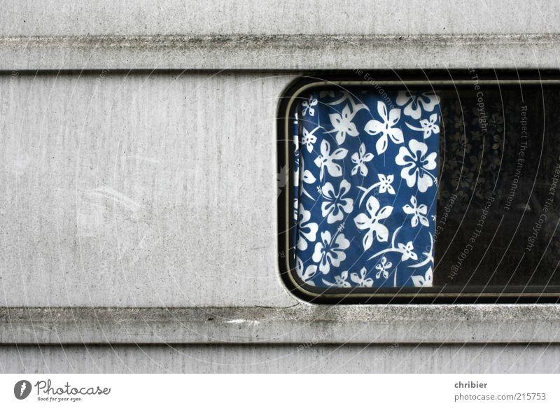 Blümchen *** [HH 10.1]*** Ferien & Urlaub & Reisen Ausflug Camping Häusliches Leben Wohnung Innenarchitektur Gardine Vorhang Fenster Oldtimer Wohnwagen Anhänger