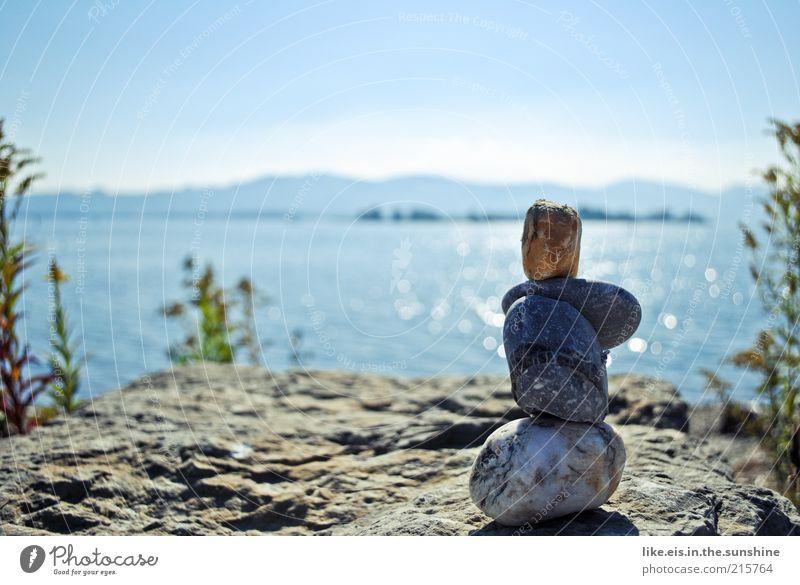 Der genießt die Aussicht Natur Wasser Himmel blau Pflanze Sommer ruhig Ferne Erholung Freiheit Stein See Küste glänzend Umwelt Horizont