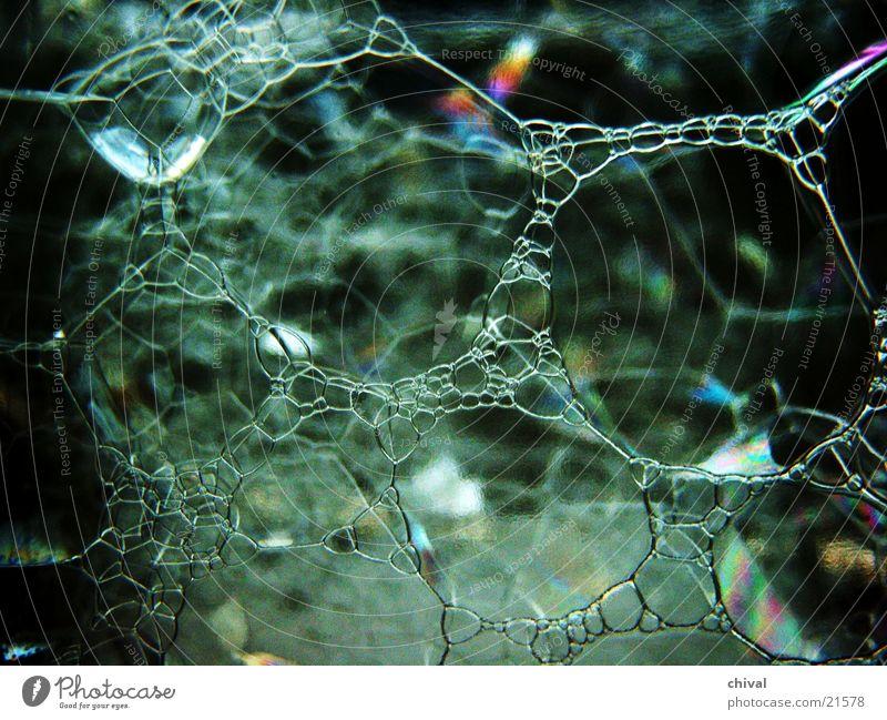 Seifenblasen 2 Wasser nass Hintergrundbild ästhetisch Netzwerk feucht bizarr Seifenblase Vernetzung Bildausschnitt dreidimensional netzartig benetzt regenbogenfarben Oberflächenspannung