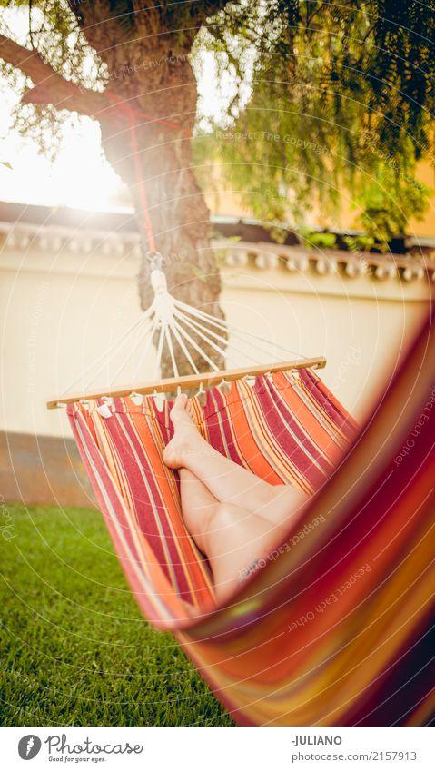Girl is relaxing in a hammock Mensch Ferien & Urlaub & Reisen Sommer schön Erholung ruhig Freude Beine Lifestyle Gesundheit feminin Glück Garten Wohnung