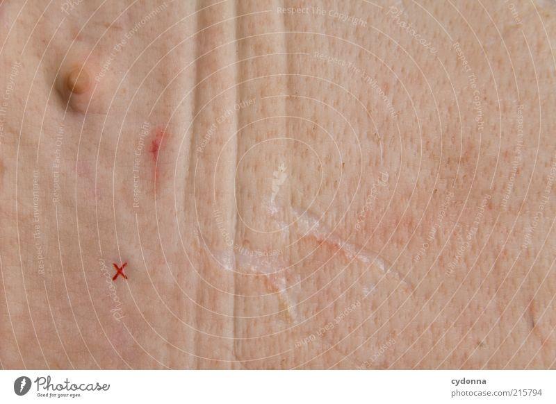 Stichtag Ernährung Leben Haut ästhetisch Vergänglichkeit Bildung Brust Kreuz Schmerz entdecken skurril bizarr Ekel Identität Wert Brustwarze