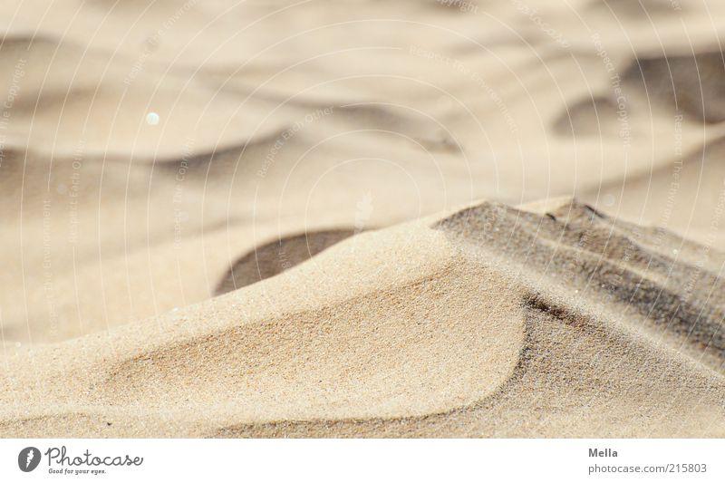 Wie Sand am Meer Natur Strand Ferien & Urlaub & Reisen Wärme Umwelt nah weich Klima Wüste Stranddüne Düne fein Dürre Klimawandel Textfreiraum