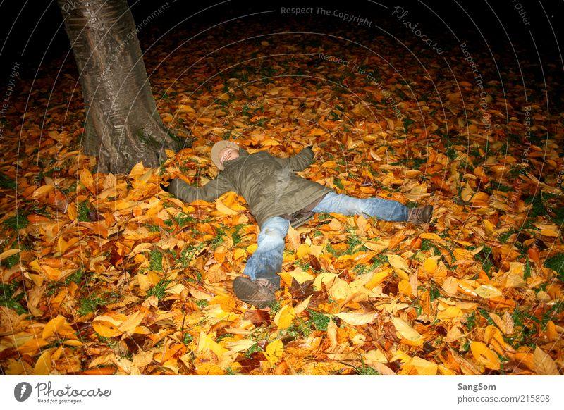 Herbstlaubengel Mensch Natur Baum grün rot Freude Blatt gelb Erholung Gefühle braun dreckig Erde schlafen liegen