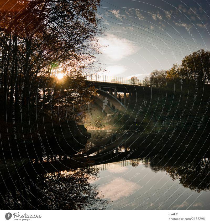 In sich ruhend Umwelt Natur Landschaft Wasser Himmel Wolken Schönes Wetter Baum Zweig Seeufer Brücke Bauwerk Autobahn Verkehrswege Beton Stahl leuchten fest