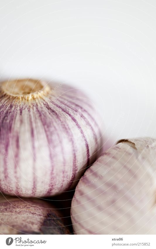 knoblauch Lebensmittel Ernährung Kräuter & Gewürze lecker Knoblauch Knoblauchknolle