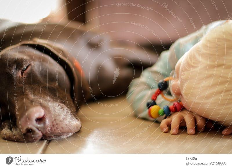 Kind mit Hund am relaxen, erholen Mensch Kleinkind 1 1-3 Jahre Haustier Tier Erholung liegen Zusammensein Zufriedenheit Freundschaft Kindheit Farbfoto