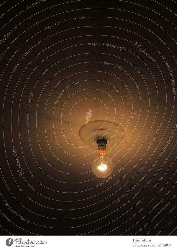 Deckenlampe schön Lampe hell klein Glas ästhetisch einfach rein leuchten erleuchten Glühbirne bescheiden gebrauchen Beleuchtung