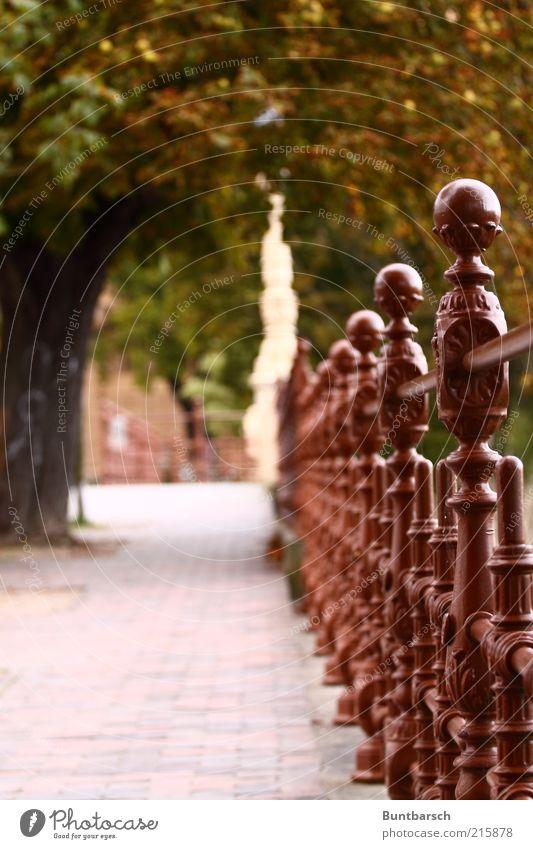 Schlossnähe alt Baum Ferien & Urlaub & Reisen Wege & Pfade Metall braun Sicherheit Vergangenheit historisch Geländer Nostalgie Sightseeing Brückengeländer