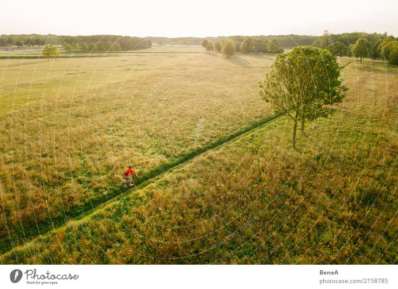 Radfahrer fährt durch Heidelandschaft im Sonnenuntergang Lifestyle Freude Freizeit & Hobby Ferien & Urlaub & Reisen Ausflug Abenteuer Ferne Freiheit Expedition