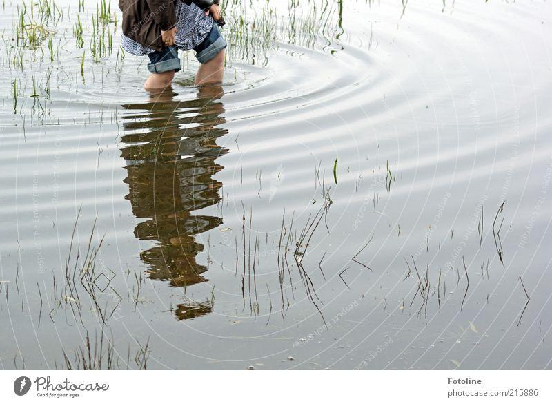 PC-User bei der Arbeit Mensch Frau Erwachsene Haut Hand Finger Beine Umwelt Natur Urelemente Wasser Pflanze Gras nass natürlich Überschwemmung überschwemmt Knie
