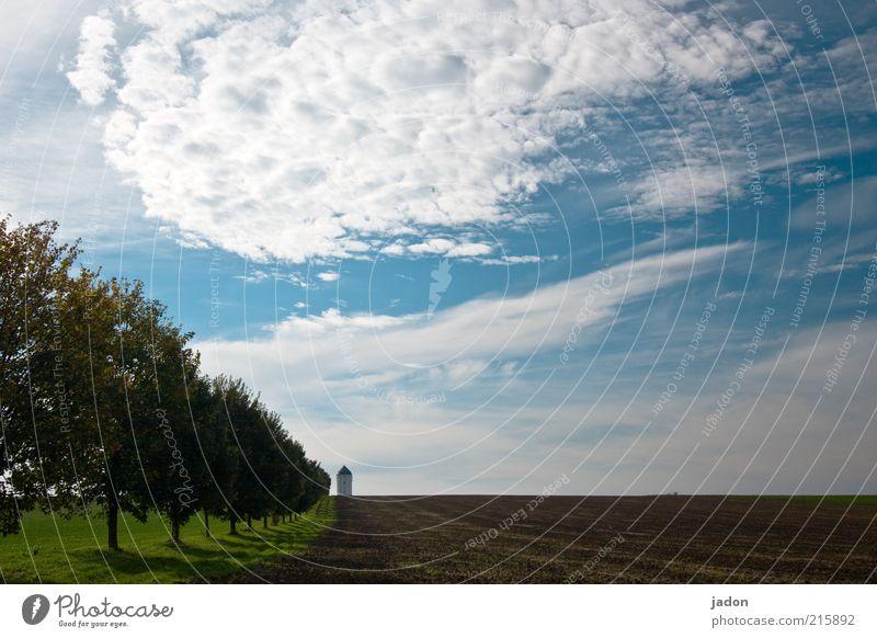 allee. Landschaft Himmel Wolken Herbst Baum Feld Turm Leuchtturm Wege & Pfade ästhetisch Unendlichkeit blau Schutz gleich Allee Baumreihe Wasserturm Schatten