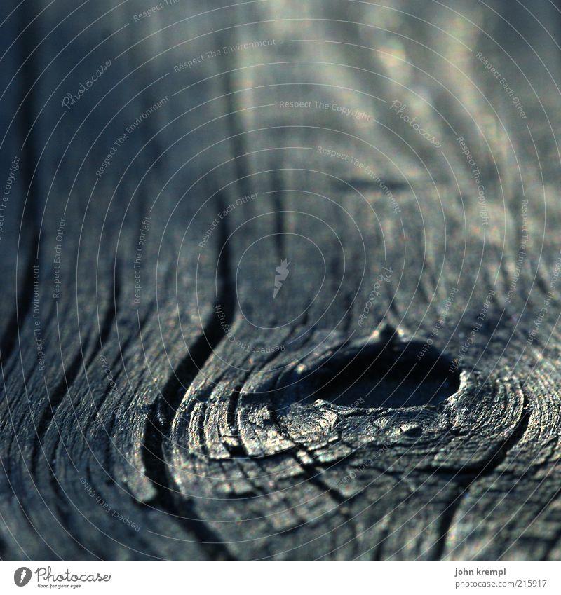 hole in my life Natur alt weiß Baum Pflanze schwarz dunkel Holz Traurigkeit Hoffnung Ende Wandel & Veränderung Loch Kurve Holzbrett Sympathie