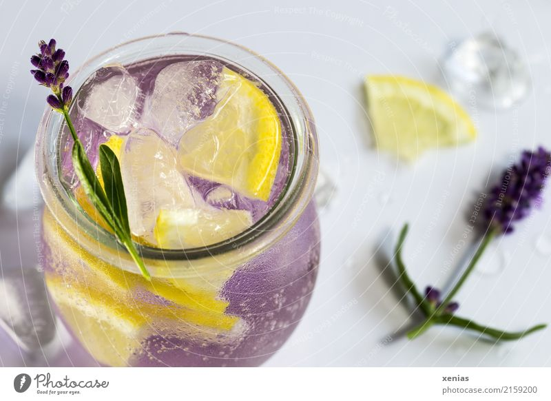 Aromatisiertes Lavendelwasser mit Zitrone, Lavendelblüte und Eiswürfel Getränk Frucht Kräuter & Gewürze Erfrischungsgetränk Trinkwasser Glas Trinkhalm