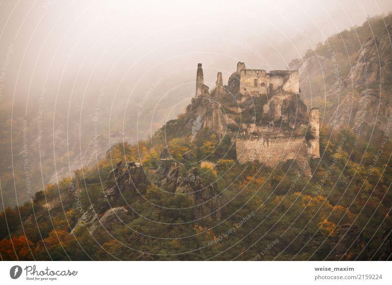 Ansicht der historischen Schlossruine, bunter Herbst Ferien & Urlaub & Reisen alt Landschaft Baum Wald Berge u. Gebirge Gebäude Tourismus Ausflug Regen wandern