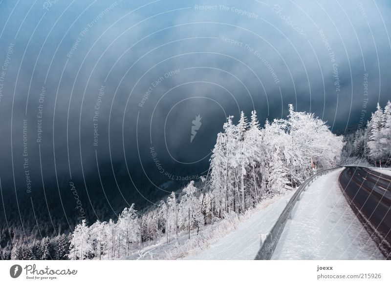 Drama am Straßenrand Himmel Winter Wolken Wald kalt Schnee Berge u. Gebirge Wege & Pfade Eis Nebel Umwelt Frost Schneelandschaft Berghang