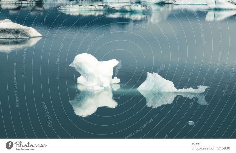 Eisvogel Natur blau Ferien & Urlaub & Reisen Wasser weiß Einsamkeit Landschaft Umwelt kalt See Stimmung außergewöhnlich wild Klima Idylle