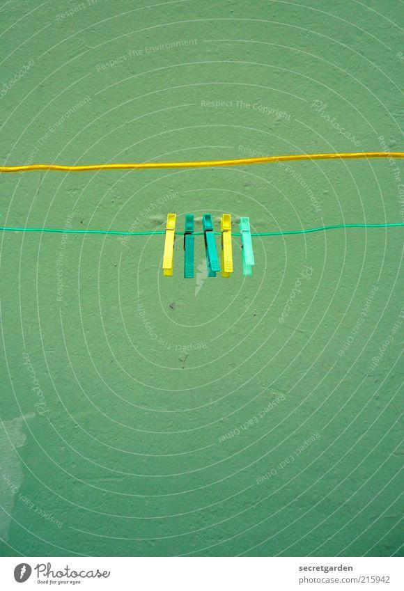[HH 10.1] gelb-türkis-türkis-gelb-grün. grün gelb Wand Mauer Linie Zusammensein leer Sauberkeit Häusliches Leben Mitte festhalten Kunststoff türkis Wäsche waschen Wäscheleine Klammer