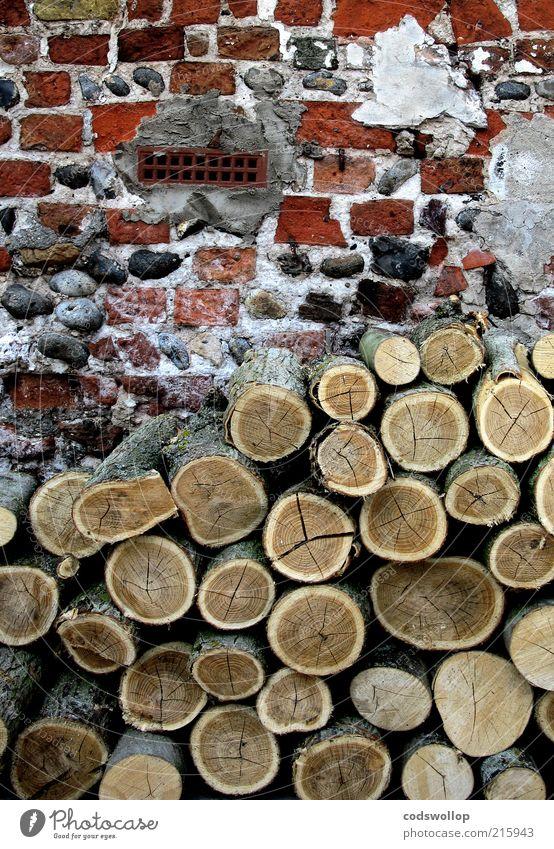 backsteine und brennholz Winter Herbst Wand Energie Fassade Wandel & Veränderung Häusliches Leben Backstein Landwirtschaft Verfall Klimawandel Forstwirtschaft ländlich Altbau altmodisch Vorrat