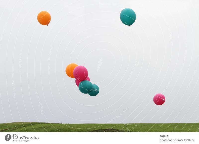 feierlaune | lasst die ballone fliegen Umwelt Himmel Wolken Wiese Dekoration & Verzierung Luftballon blau orange rosa Freude Feste & Feiern Schnur Schweben