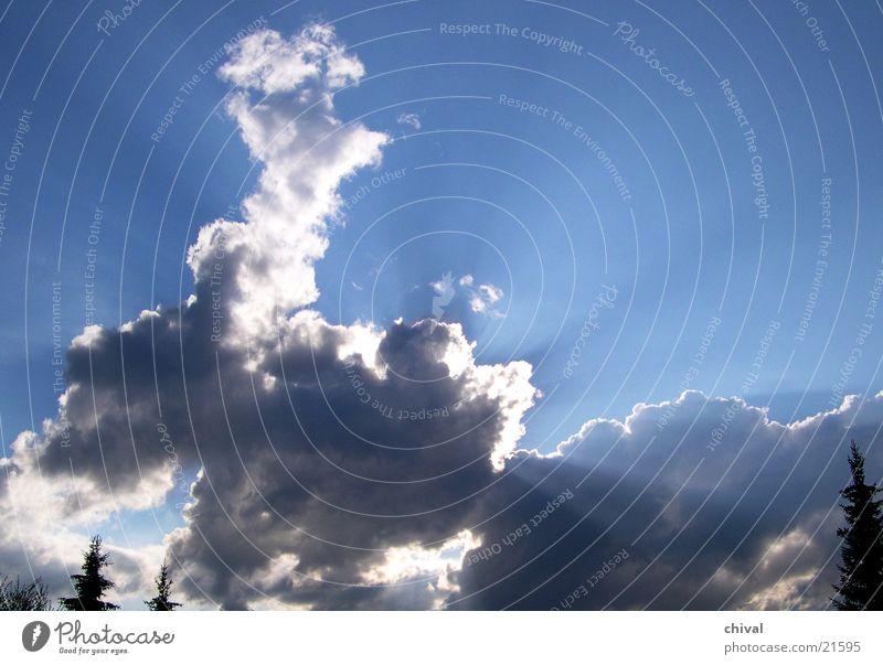 Wolkenformation weiß schwarz Himmel Kontrast Sonne Beleuchtung blau