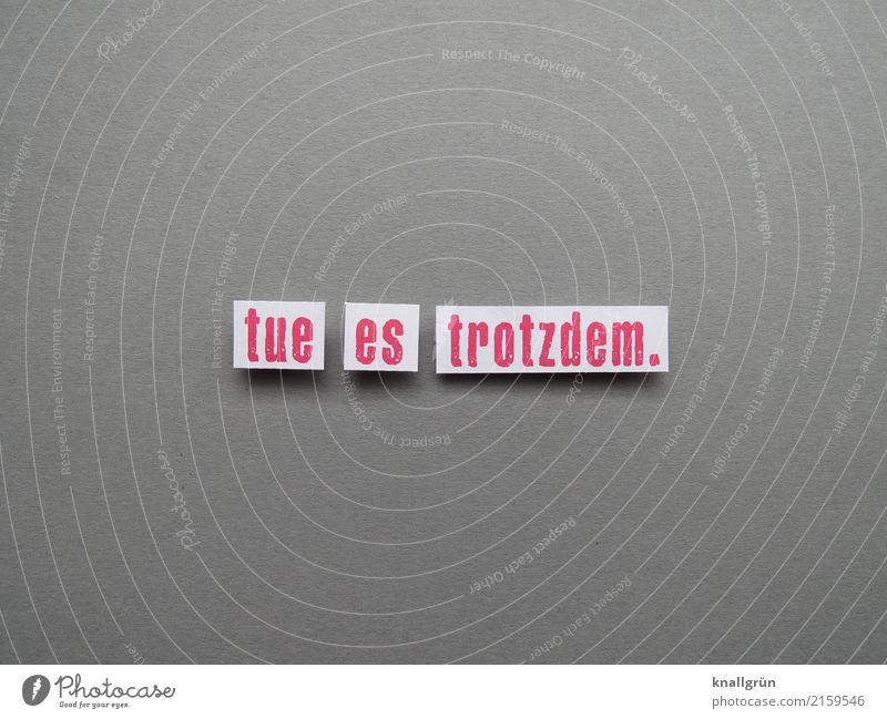 tue es trotzdem. Schriftzeichen Schilder & Markierungen Kommunizieren eckig rebellisch grau weiß Gefühle Stimmung Vorfreude selbstbewußt Kraft Mut Tatkraft