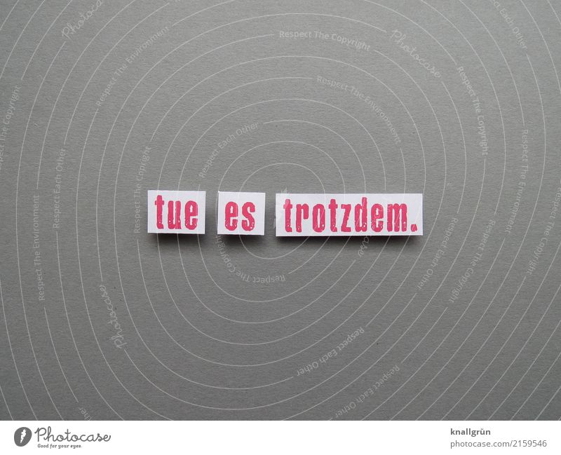 tue es trotzdem. weiß Gefühle grau Stimmung Schriftzeichen Kommunizieren Kraft Schilder & Markierungen Aktion Beginn Neugier Mut Inspiration eckig Vorfreude