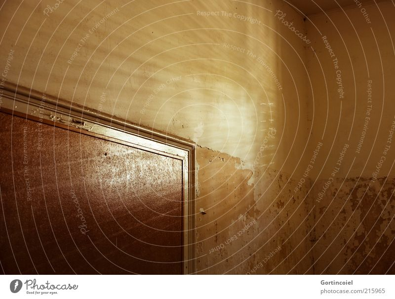 Strahlen alt Haus Wand Mauer Tür Fassade Wandel & Veränderung verfallen Verfall Strahlung Ruine Leerstand verwittert Sonnenlicht