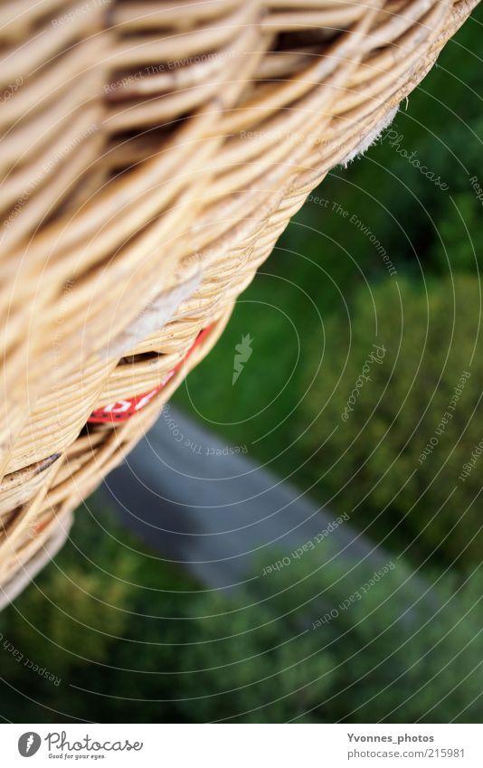 Ausblick grün Ferien & Urlaub & Reisen ruhig Gefühle Freiheit Luft Freizeit & Hobby hoch Ausflug frei Luftverkehr Symbole & Metaphern Schönes Wetter Ballone