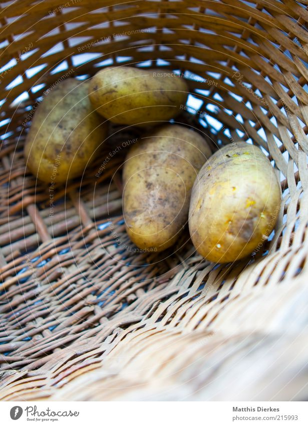 Kartoffeln Ernährung Lebensmittel ästhetisch natürlich Bioprodukte Korb Dinge Vorrat roh Vegetarische Ernährung Kartoffeln Gemüse Kontrast Vorratsbehälter